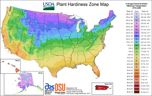 Plant Hardiness Zone Information